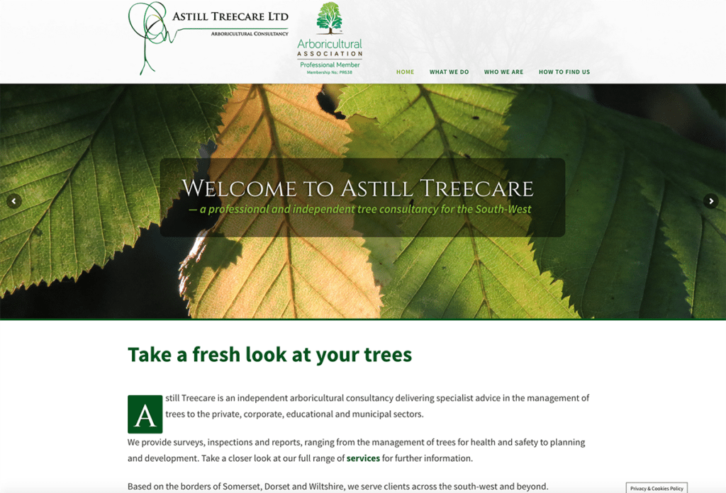 Astill Treecare Home Page by Digiwool Web Design Sherborne