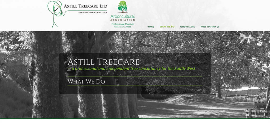 Astill Treecare What We Do by Digiwool Web Design Sherborne