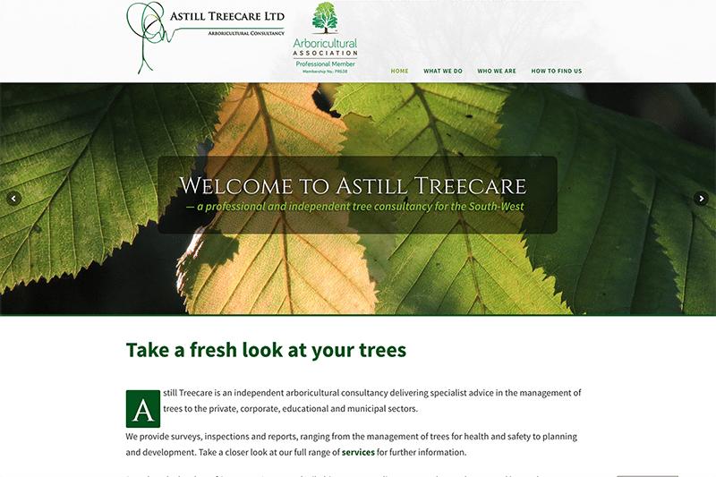 Astill Treecare Web Design Dorset